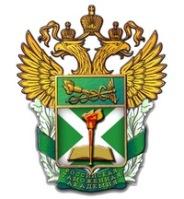 Дистанционное обучение в Российская таможенная академия